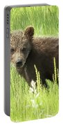 I Love Me A Teddy Bear Portable Battery Charger by Belinda Greb