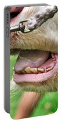I Need To See My Dentist Portable Battery Charger by Kaye Menner