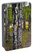 I See You - The Aspens Portable Battery Charger