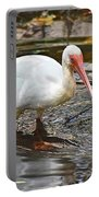 Ibis At Corkscrew Swamp Portable Battery Charger