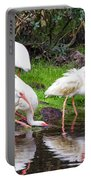 Ibis Reflections Portable Battery Charger