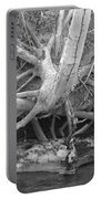 Twisted Roots  Portable Battery Charger