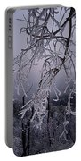 Ice Trees Portable Battery Charger