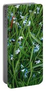 Iceblue Squill Portable Battery Charger