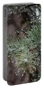 Iced Pine Portable Battery Charger
