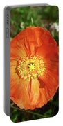 Iceland Poppy Portable Battery Charger