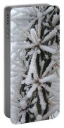 Icy Cactus Portable Battery Charger