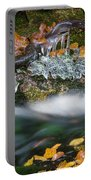 Icy Foliage Stream Portable Battery Charger
