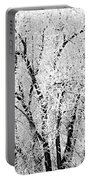 Icy Tree Portable Battery Charger