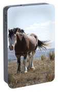 Idaho Work Horse 2 Portable Battery Charger