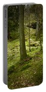 If You Go Down..................... Portable Battery Charger
