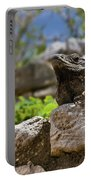 Iguana At Talum Ruins Mexico Portable Battery Charger