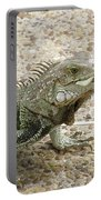 Iguana Eating Lettuce With His Tongue Sticking Out Portable Battery Charger