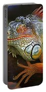 Iguana Full Of Color Portable Battery Charger