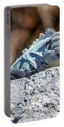 Iguana In Ek Balam Portable Battery Charger
