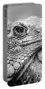 Iguana Stardust Portable Battery Charger