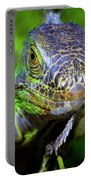 Iguana Stare Portable Battery Charger
