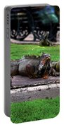 Iguana Trio Portable Battery Charger