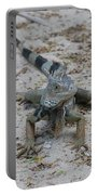 Iguana With A Striped Tail On A Sand Beach Portable Battery Charger