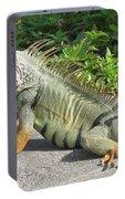 Iguania Sunbathing Portable Battery Charger