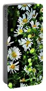 Illinois Wildflowers 1 Portable Battery Charger