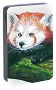Illlustration Of Red Panda On Branch Drawn With Faber Castell Pi Portable Battery Charger