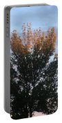 Illuminated Tree Top Portable Battery Charger