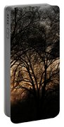 Illuminating Through Trees  Portable Battery Charger