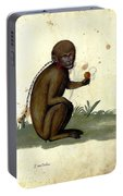 Illustration For A Book By Italian Scientist And Naturalist Ulisse Portable Battery Charger