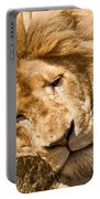 Im Sleeping Portable Battery Charger