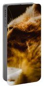 I'm The Lion  Portable Battery Charger