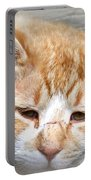Img_0001 Cat Portable Battery Charger