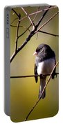 Img_0001 - Dark-eyed Junco - Snowbird Portable Battery Charger