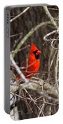 Img_0806 - Northern Cardinal Portable Battery Charger