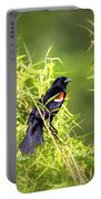Img_0841-003 - Red-winged Blackbird Portable Battery Charger