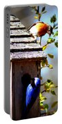 Img_1154 - Eastern Bluebird Portable Battery Charger