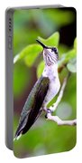 Img_1243-004 - Ruby-throated Hummingbird Portable Battery Charger