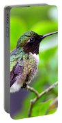 Img_3524-002 - Ruby-throated Hummingbird Portable Battery Charger