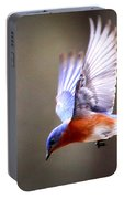 Img_4139-003 - Eastern Bluebird Portable Battery Charger