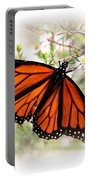 Img_5290-004 - Butterfly Portable Battery Charger