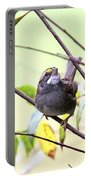 Img_7541-002 - White-throated Sparrow Portable Battery Charger