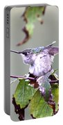 Img_9114-003 - Ruby-throated Hummingbird Portable Battery Charger