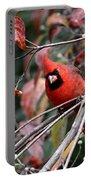 Img_9971-023 - Northern Cardinal Portable Battery Charger