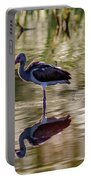 Immature White Ibis At Sunrise Portable Battery Charger