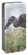 Immature Yellow Crown Night Heron Portable Battery Charger