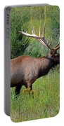 Imperial Bull Elk Portable Battery Charger