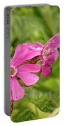 In Meadows II Portable Battery Charger