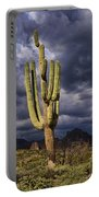 In Search Of That Perfect Saguaro  Portable Battery Charger