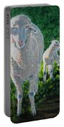 In Sheep's Clothing Portable Battery Charger