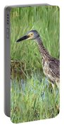 In Tall Grasses Portable Battery Charger